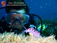 """Kalymnos Diving • <a style=""""font-size:0.8em;"""" href=""""http://www.flickr.com/photos/150652762@N02/36465028845/"""" target=""""_blank"""">View on Flickr</a>"""