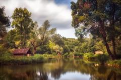 At the lake (RobertFenyo) Tags: nature landscape lake colorful reflection summer peaceful