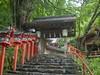 Kifune shrine (toshto) Tags: 貴船神社 京都 山 水 森 神社 寺院 自然 宇宙 川 御神木 kifune kyoto japan mountain water wood shrine temple nature river universe sacredtree