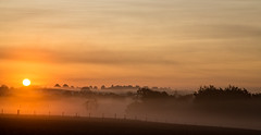 Late summer morning (Peter Leigh50) Tags: sunrise mist early morning leicestershire landscape