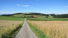 Affoltern i.E, 29.7.17 (ritsch48) Tags: affoltern affolternie emmental kantonbern eggerdingen