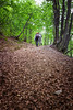 Si sale (SDB79) Tags: sentiero natura majella parco escursione trekking foglie foresta bosco alberi sottobosco