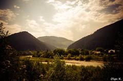 DSC_3587 (Olga Kapushtenska) Tags: wood tree bridge putila chernivtsi nature mountains water pine christmas river bukovina путила буковина карпаты горы лес сосны река природа olga k