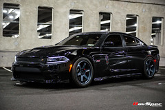 "RAYS Volk Racing Te37 - Dodge Charger Scatpack Kenny • <a style=""font-size:0.8em;"" href=""http://www.flickr.com/photos/64399356@N08/36737350322/"" target=""_blank"">View on Flickr</a>"