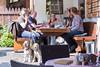 20170909-IMG_4882.jpg (peterrinzner) Tags: abc css beagleclub 39css kaprun salzburg österreich at