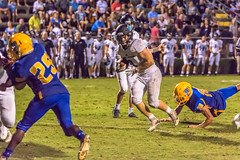 "PVHS v. Palatka '17-298 (mark.calvin33) Tags: pontevedra football nightgame highschool pvhs runningback blocker offense defense kick pass catch hit tackle rush rushingyards rushing student quarterback ""night ""friday night lights"" ""passing game"