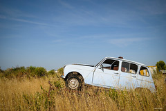 Renault 4 g ( 13 ) (RicoFromMars) Tags: renault 4