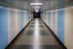Park Lane Subway, 00:54 (LFaurePhotos) Tags: londonbynight mayfair parklane w1k lfaurephotos london subway underpass