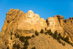 First Light on Mount Rushmore (Thomas Hawk) Tags: abrahamlincoln america blackhills georgewashington gutzonborglum keystone lincolnborglum mountrushmore mountrushmorenationalmemorial mtrushmore patriotism southdakota teddyroosevelt theodoreroosevelt thomasjefferson usa unitedstates unitedstatesofamerica politics president presidents sculpture us fav10 fav25