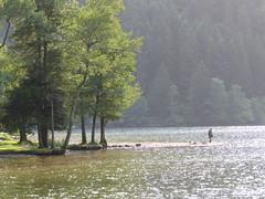 Lac de Longemer - Vosges/Lorraine (thobern1) Tags: lacdelongemer longemer geradmer vosges vogesen lorraine lothringen france vologne lac see lake grandest