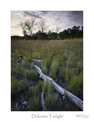 Dolomite Twilight (baldwinm16) Tags: forestpreserve il illinois september usa autumn calm dusk environment evening fall habitat midwest nature outdoors outside peaceful praireplants prairie prairiegrass quiet restful season sunset tranquil twilight