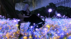 Felice@Fraz's Forest (Fraz_Gloom) Tags: second life magical photography portrait bestie beautiful scenic forest elven