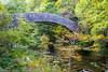 Chiselcombe Bridge (stuleeds) Tags: eastlynriver falls nationaltrust river watersmeet