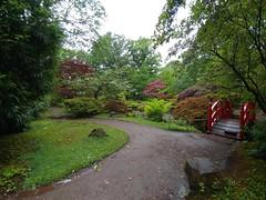 Clingendael Tuin (Elad283) Tags: holland haag hague thehague denhaag netherlands nederland garden japanesetuin clingendaeltuin clingendael japanese japan park