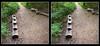 Longwood Gardens Walk 6 - Parallel 3D (DarkOnus) Tags: pennsylvania bucks county panasonic lumix dmcfz35 3d stereogram stereography stereo darkonus longwood gardens scenic scenery trail path hyper hyperstereo bench treehouse birdhouse parallel
