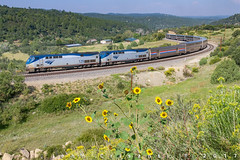 Late Summer on Wootton Curve (Colorado & Southern) Tags: amtrak gep42dc thesouthwestchief southerncolorado passenger passengercars ratonpass trains train railfanning railroad railfan railway railroads railroading rail rr railroadtrack colorado coloradorailroads coloradotrains