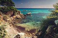Paradise (HatCat Photography) Tags: sky sea sunset water beach travel sun coast coastline ocean waves rocks summer beautiful sand mallorca seascape sundown paradise white palm tree