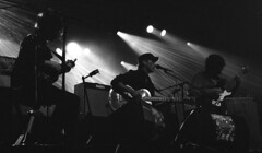"""Chausse Tes Tongs 2017"" (The Blue Water Lily's Company) Tags: fdrouet nb bw monochrome monochrom film analog concert miossec nikon kodak chaussetestongs festival musicien musician bretagne brittany breton"