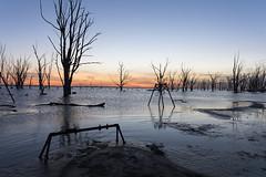Light doom (Sebastián-Dario) Tags: lago lake sun sol sunset atardecer luz hora azul blue hour spring primavera nature flood inundacion argentina buenos aires