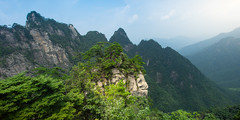Da Ming Mountain / 大明山