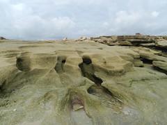 Coquina Formations (dnborgman) Tags: coquina florida