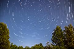 Star Trails above the Breezeway (T P Mann Photography) Tags: stars sky night perseid meteor showers dark trees rural north breezeway michigan ellsworth tripod long exposure moon moonlit