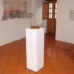 """Inauguración """"Memoria Tísica"""""""" de Edgardo Aragón"""