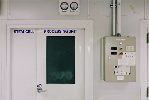 Stem Cell Processing Unit, Suan Dok hospital, Chiang Mai