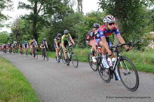 Omloop Vlaamse gewesten (313)