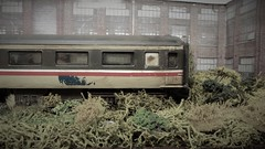 Still Waiting To Be Scrapped? (ManOfYorkshire) Tags: airfix mk2 coach britishrail intercity scrapped waiting withdrawn siding overgrown unloved detailed weathered repaint repainted