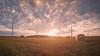 Vom Winde geballt (PixTuner) Tags: pixtuner poller ballen heu bauer gras rasen winkraft windkrafträder