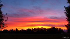 P1390470 (Christen Ann Photography) Tags: 2016 carterton christmasholidays december2016 landscape nature newzealand sun sunset wairarapa