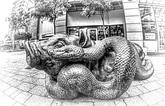 Strange Bedfellows (beelzebub2011) Tags: canada britishcolumbia vancouver bw monochrome 15mmfisheye hdr pig snake artwork sculpture