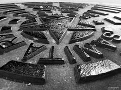 Sewer black star (.KiLTRo.) Tags: austin texas unitedstates kiltro sanitary sewer street infrared monochrome closeup macro 7dwf dof metal iron ground