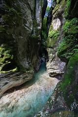 The pit (Jumpin'Jack) Tags: gorge ravine tolminska korita stream river creek deep below steep hill slopes trees grass moss water rock ultrawide lens sigma 816mm dri