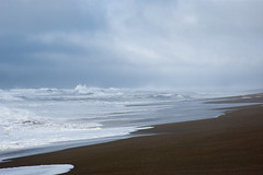 Point Reyes beach (Middle aged Nikonite) Tags: california nikon d7200 ocean waves seaside landscape seascape beach foggy scenic outdoor water sand coast sky
