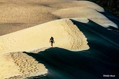 Jeune femme sur la dune du Pilat au coucher du soleil (didier95) Tags: dunedupilat coucherdesoleil latestedebuch gironde dune pilat pyla sable paysage personnage scenedevie femme pas ombre lumiere jaune noir
