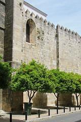 Lisbonne (fxrenard) Tags: lisbonne lisboa portugal paysageurbain paysage histoire architecture urbanisme oranger cathedrale
