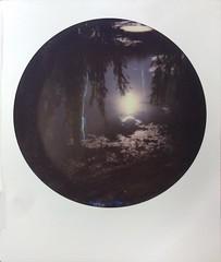 Dark Waters (o_stap) Tags: roundframe filmisnotdead believeinfilm ishootfilm makerealphotos instant analog polaroid600 polaroid