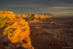 Golden Dead Horse Point (NettyA) Tags: 2017 canyon coloradoplateau deadhorsepointstatepark moab northamerica sonya7r usa utah clouds landscape rocks sky sunset travel cliff golden people lookout
