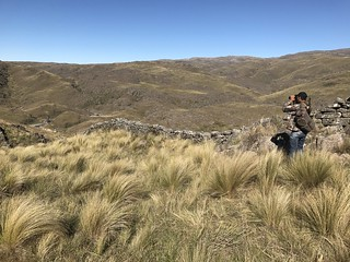 Argentina Red Stag Hunt Cordoba 41