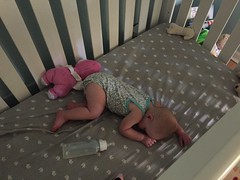 """Dani Asleep in Her Crib • <a style=""""font-size:0.8em;"""" href=""""http://www.flickr.com/photos/109120354@N07/36454156760/"""" target=""""_blank"""">View on Flickr</a>"""