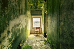 the green mile (Andy Schwetz ( andyschwetz,de)) Tags: urbex abandoned mold chair light green moss decay verfall beautyindecay moos canoneos6d canon1635f40 stuhl fdgb urbanexploration andyschwetz fineart lostplace lostplaces verlasseneorte vergessen ddr