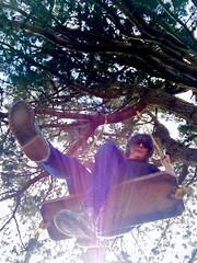 Defying Gravity (BenitaMarquez) Tags: bayarea boots summer weekendsherpa nature outdoors westcoast thecity hill swing docmartens bouncingsoles woman girl sunlight branches tree northerncalifornia california bernalheights sanfrancisco