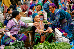 Scene at Bac Ha Sunday Market, Northern Vietnam (syukaery) Tags: bacha laocai vietnam indochina northern market sunday indigeneous traditional hmong people transaction seller local dailylife asia asian southeast vegetables nikon d750 nikkor 105mm