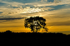 Photo of Swarby Sunset 5