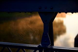 Bridging the Web