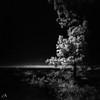 Mystic Light (ShimmeringGrains) Tags: ir720 eerie mediumformat infrarödfilm bw svartvitt filmphotography pinhole ©marieahlén sky scanned efke820ir scannad shimmeringgrains blacksky zeroimage2000btn sea mystic water tree reflection square irphoto 120film mellanformat pinholephotography 6x6 film ir infraredfilm infrared zeroimage analog blackandwhite monochrome painterly impressionistic