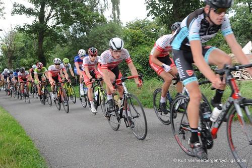 Omloop Vlaamse gewesten (331)