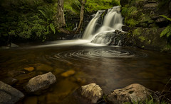 Swirl (cliveg004) Tags: swirl waterfall falls talybont breconbeacons waunrhyd rocks stream tree le wales nikon d5200 challengegamewinner